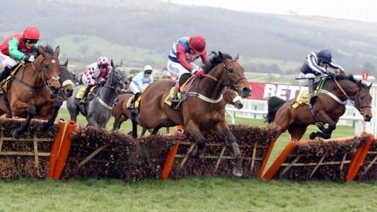 Dougie Costello Jockey - Tartak Racehorse - Tim Vaughan Trainer - Aintree Racecourse - Horse Racing Tips, Selections, News & Reviews.