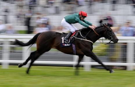 Joe Fanning Jockey - Meydan Style Racehorse - Southwell Racecourse All Weather Horse Racing Tips, Selections, News & Reviews
