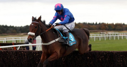 Joe Tizzard Jockey - Sew On Target Racehorse - Colin Tizzard Trainer - Newbury Racecourse - Horse Racing Tips, Selections, News & Reviews.
