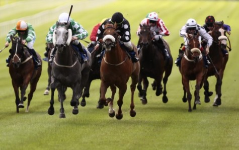 Johnny Murtagh Jockey - Educate Racehorse - Ismail Mohammed Trainer - Haydock Racecourse - Horse Racing Tips, Selections, News & Reviews.