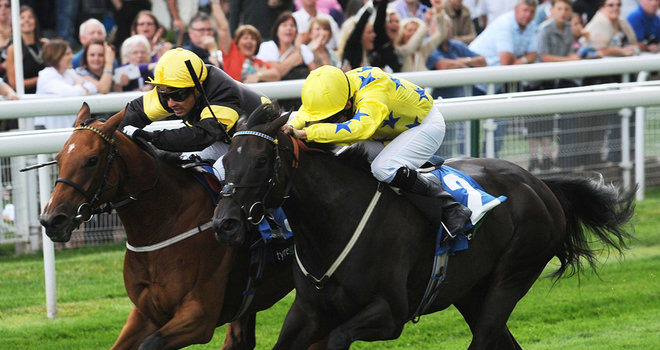 Jamaican Bolt Racehorse - Geoffrey Oldroyd Trainer - Robert Tart Jockey - Newcastle Racecourse - Horse Racing Tips, Selections, News & Reviews.
