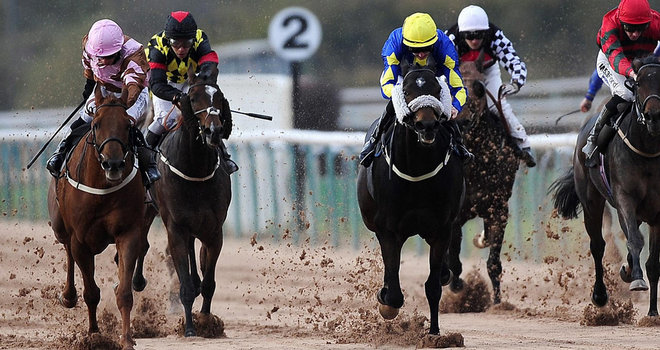 Southwell Racecourse - Horse Racing Tips, Selections, News & Reviews.