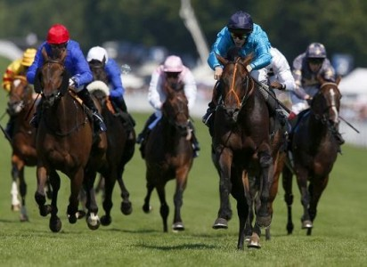 Tom Dascombe Trainer - Fat Gary Racehorse - Ross Atkinson Jockey - Wolverhampton Racecourse - Horse Racing Tips, Selections, News & Reviews.