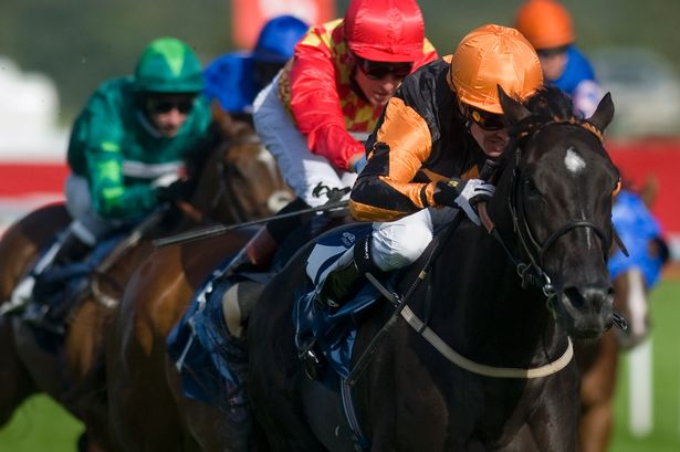 Sirius Prospect Racehorse - Dean Ivory Trainer - Shane Kelly Jockey - York Racecourse - Horse Racing Tips, Selections, News & Reviews.