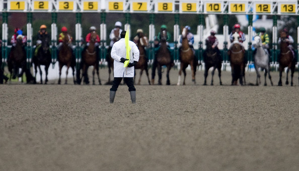 Kempton Racecourse - All Weather Horse Racing Tips, Selections, News & Reviews