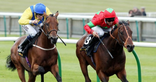 Richard Hannon Trainer - Pilgrims Rest Racehorse - Jim Crowley Jockey - Glorious Goodwood Racecourse - Horse Racing Tips, Selections, News & Reviews.