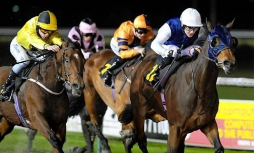 Stevie-Donohoe-Jockey-Prince-Of-Sorrento-Racehorse-Lee-Carter-Trainer-Newcastle-Racecourse-Horse-Racing-Tips-Selections-News-Reviews.