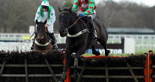 Wayne Hutchinson Jockey - Alan King Trainer - Newbury Racecourse - Horse Racing Tips, Selections, News & Reviews.