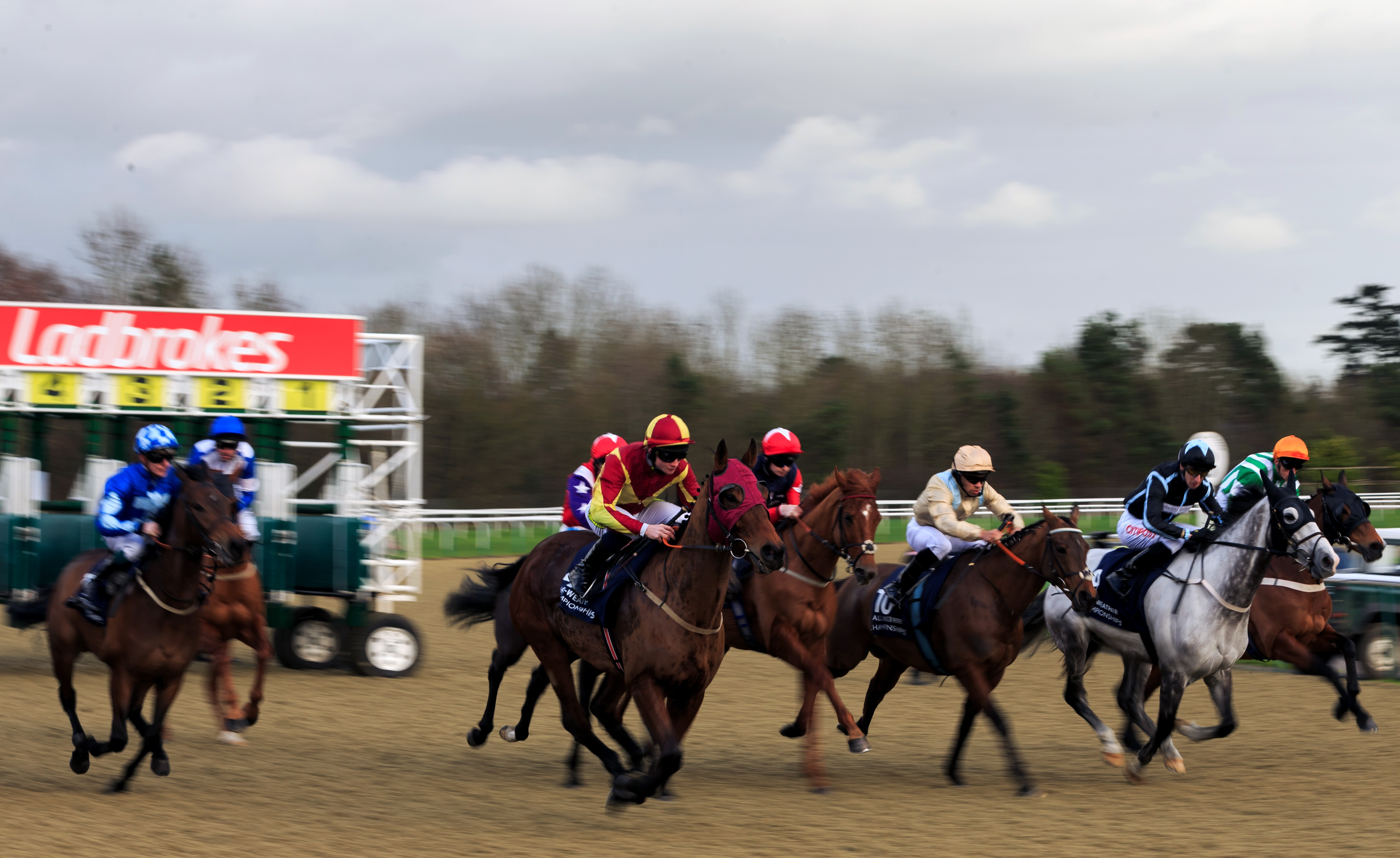 The field burst out of the stalls during The Download The Ladbrokes App Handicap (Class 6) (4YO plus) at Lingfield Park Racecourse.